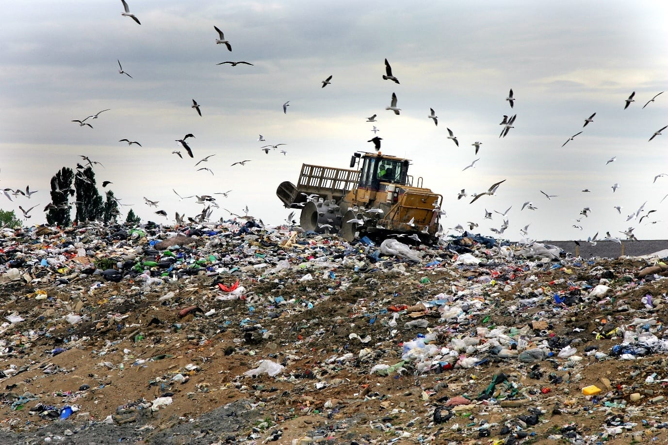 Understanding the south african waste sector