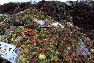 Food waste image