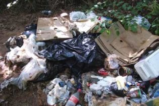 Illegal dumping image