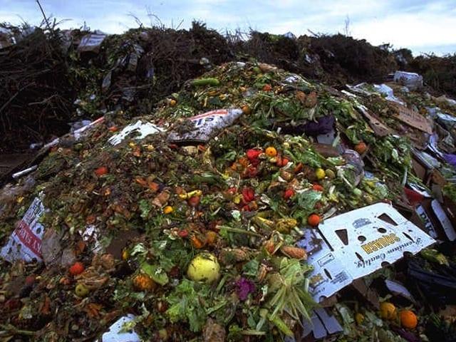 Making food waste illegal