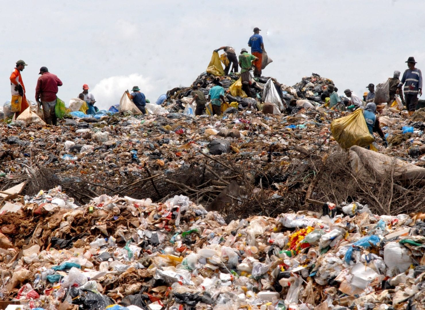 Targeted research needed on impacts and opportunities around waste