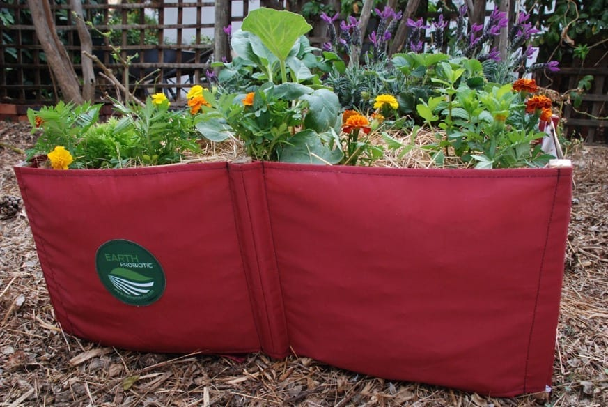 How To Create Your Own Food Waste Garden Infrastructure News
