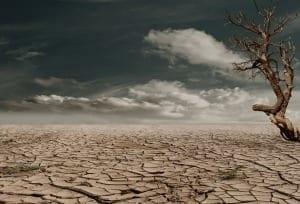 Drought xxx