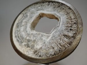 Struvite build-up in a pipe