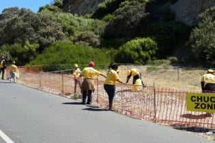 Plastics SA Cape Town Cycle Tour clean up crew at work