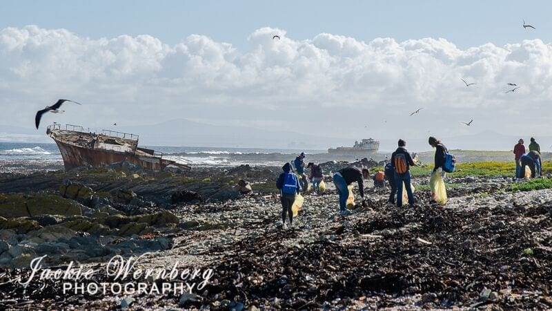 SA's biggest beach pollutants revealed