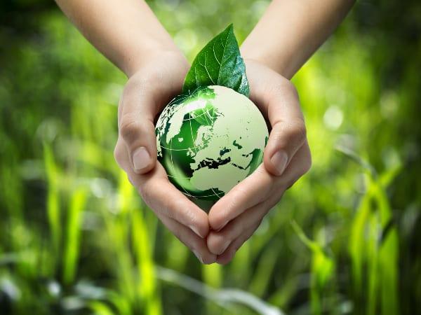 Low hanging fruit can move SA circular economy efforts forward
