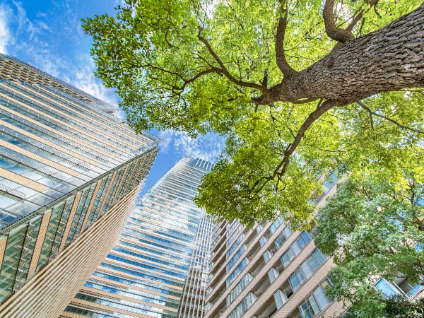 Green buildings are key to reducing energy consumption